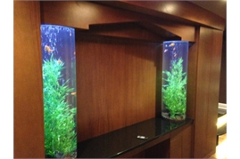 Custom Aquarium Close Up